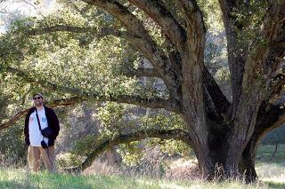 Bill and Live Oak